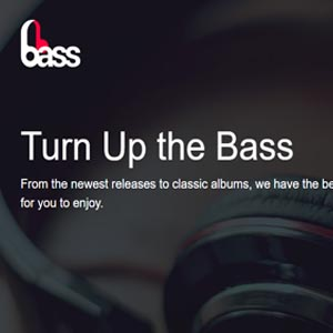 Bass, A Web Page Project